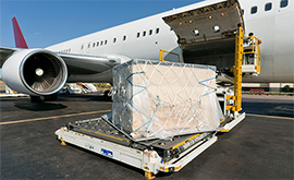 International airfreight assistance