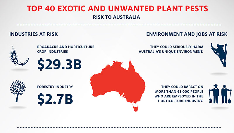 The top forty national priority pests place at risk a twenty seven point nine billion dollar broadacre and horticulture crop industry and a two billion dollar forestry industry